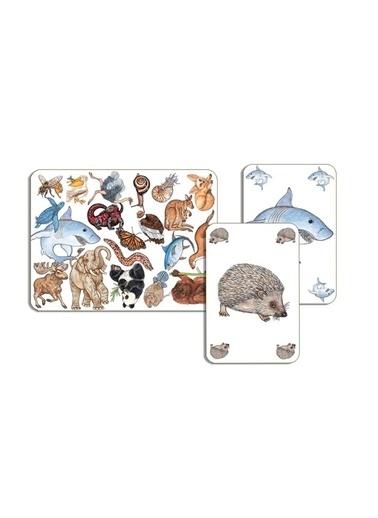 Djeco Djeco Kart Oyunları / Zanimatch Pembe
